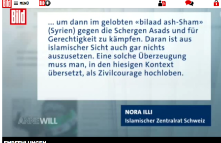 "Video der Passagen bei ""Bild"""